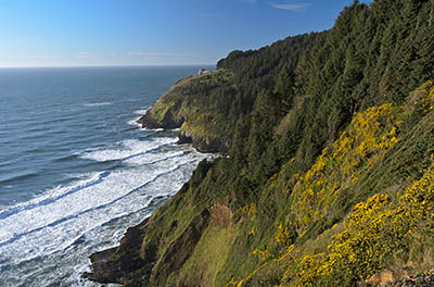 OR: South Coast Region, Lane County, Pacific Coast, Cape Perpetua Area, Sea Lion Cliffs, Cliff view. The Sea Lion Caves attraction is visible in the distance. [Ask for #276.566.]