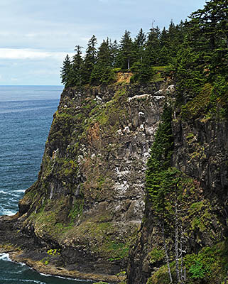 OR: North Coast Region, Tillamook County, Pacific Coast, Cape Meares, Cliffs of Cape Meares [Ask for #278.281.]