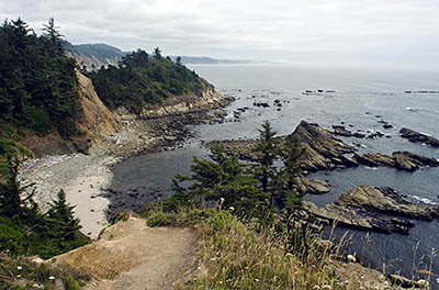 OR: South Coast Region, Coos County, Coos Bay Area, Cape Arago Area, Cape Arago State Park, Cliff view [Ask for #271.156.]
