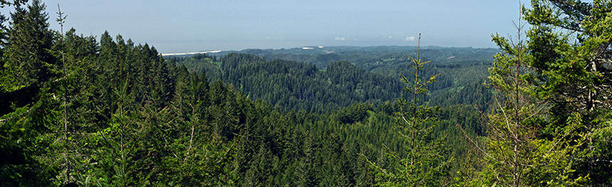 OR: South Coast Region, Coos County, Coastal Range, Elliot State Forest, Dean Mountain Area, Panoramic view towards Oregon Dunes NRA and the Pacific Ocean, from Dean Mountain Road at Trail Butte. [Ask for #274.158.]