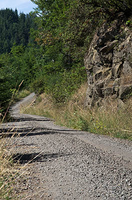 OR: South Coast Region, Coos County, Coast Range, Elliott State Forest, The Ridgetop Drive, FR 2000, Western mainline road runs along ridge tops through rock cuts [Ask for #274.473.]
