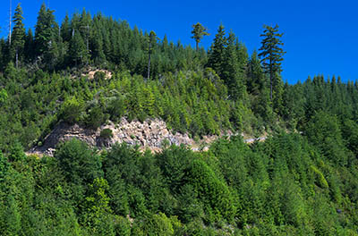 OR: South Coast Region, Coos County, Coast Range, Elliott State Forest, The Ridgetop Drive, FR 2000, View from a clearcut along the western mainline road, showing FR 2000 slabbing through a clearcut [Ask for #274.480.]