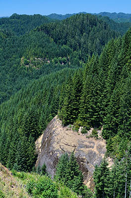 OR: South Coast Region, Douglas County, Coast Range, Elliott State Forest, Northeast Quadrant, Cougar Pass Area, Cliffs emerge from fir forests as viewed from Cougar Pass [Ask for #274.505.]