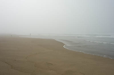 Beachcombing in the fog at Horsfall Beach.