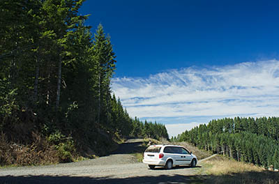 OR: South Coast Region, Coos County, Coast Range, Elliott State Forest, The Ridgetop Drive, FR 7000, A Dodge Grand Caravan follows the Ridgetop Drive [Ask for #274.A54.]
