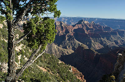 AZ: Northern Arizona Region, Coconino County, Grand Canyon Area, Grand Canyon National Park, North Rim, Grand Canyon Lodge-North Rim, Lodge Overlook, Canyon view [Ask for #275.182.]