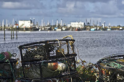 OR: Coos County, Coos Bay Area, Charleston Area, Charleston Harbor, Crab traps [Ask for #276.185.]