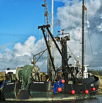 OR: Coos County, Coos Bay Area, Charleston Area, Charleston Harbor, Commercial fishing boats on the floating docks [Ask for #276.204.]