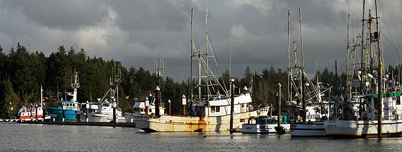 OR: Coos County, Coos Bay Area, Charleston Area, Charleston Harbor, Commercial fishing boats on the floating docks [Ask for #276.208.]