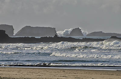 The Oregon Dunes meet the cliffs of Cape Arago.