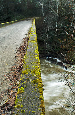 OR: South Coast Region, Coos County, Coast Range, Old Coos Bay Wagon Road, Sitkum Community, The East Fork Coquille River in flood underneath the Weaver Road Bridge, a BLM access road off the Old Wagon Road. [Ask for #276.269.]
